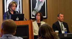 Pia Christensen/AHCJJan Emerson-Shea, vice president of external affairs for the California Hospital Association, guides journalists in how to work with hospitals and patient privacy laws at Health Journalism 2015.