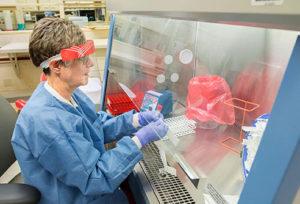 Clinical lab scientist Nancy Leonard prepares samples to be tested for COVID-19. She wears a face shield and gloves for protection because she is handling material that may contain the virus and will transfer patient samples into smaller tubes for testing.