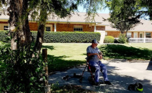 NursingPrivateEquity_Blog_Aging_Seegert-50401413923_cef0234a0f_c