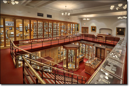 The world-renowned Mütter Museum features medical oddities, antique surgical instruments and the rarely seen collections of the Historical Medical Library, one of the most important such collections in the world.