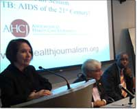 Panelists discuss tuberculosis.